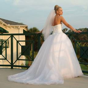 Tampa-Photo-Brides