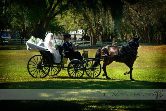 Adam_and_Stacis_Fairy_Tale_Lange_Farm_Wedding